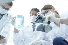 Scientists conducting research in a lab environment. Young women medical researcher looking through microscope in laboratory Stock Photography