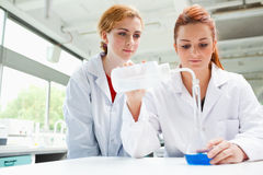 Scientists doing an experiment Royalty Free Stock Photos