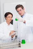 Scientists examining attentively beaker with green fluid Royalty Free Stock Images