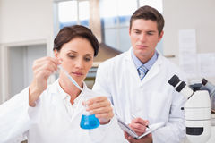 Scientists examining attentively pipette with blue fluid Royalty Free Stock Photos