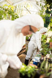 Scientists examining plants at greenhouse. Female scientists examining plants at greenhouse Stock Photography