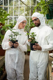 Scientists examining potted plants. Scientists in clean suit examining potted plants at greenhouse Royalty Free Stock Photo
