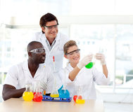 Scientists examining a test-tube Royalty Free Stock Photo
