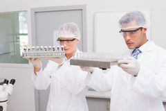 Scientists examining tubes Stock Photo