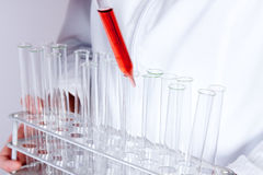 Scientists Experimenting Stock Photography