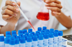 Scientists experimenting in laboratory Stock Image