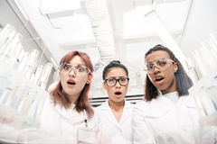Scientists group in white coats in laboratory. Low angle view of scientists group in white coats in laboratory Stock Photo
