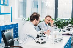 Scientists in lab coats and eyeglasses discussing work at workplace. In lab stock images