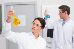 Scientists looking attentively at beakers Royalty Free Stock Photo