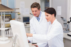Scientists looking attentively at computer Royalty Free Stock Photography