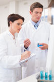Scientists looking attentively at computer Stock Image