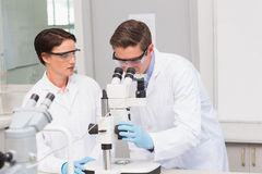 Scientists looking attentively in microscope Stock Photo