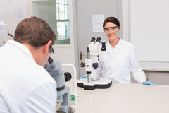 Scientists looking attentively in microscopes Stock Image