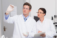 Scientists looking attentively at pill Stock Image