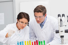 Scientists looking attentively at test tube Royalty Free Stock Image