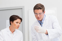 Scientists looking attentively at test tube Royalty Free Stock Images