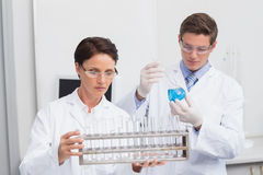 Scientists looking attentively at test tubes Royalty Free Stock Photography