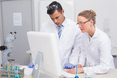Scientists looking at computer. In the laboratory Royalty Free Stock Photo