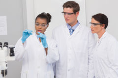 Scientists looking at experimentation Stock Photography