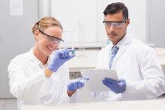 Scientists looking at petri dish and taking notes Royalty Free Stock Photo