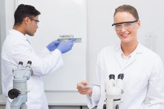 Scientists looking at petri dish and tubes Stock Photo