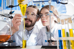 Scientists making experiment. Young male and female scientists making experiment in laboratory Royalty Free Stock Image