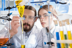 Scientists making experiment. Young male and female scientists making experiment in laboratory Royalty Free Stock Photography
