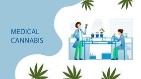 Scientists medical cannabis laboratory stock illustration