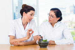 Scientists mixing herbs with pestle and mortar Stock Photography