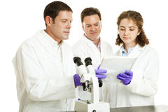 Scientists Read Test Results Stock Photos