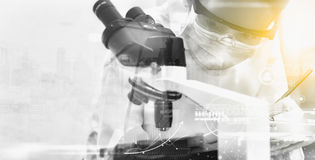 Scientists record data and use microscope, entry data to develop Stock Images