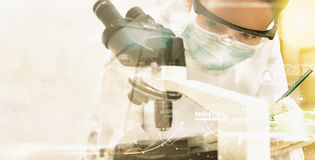 Scientists record data and use microscope, entry data to develop Royalty Free Stock Photos