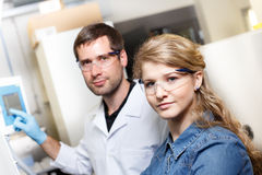 Scientists research in a lab environment Royalty Free Stock Image