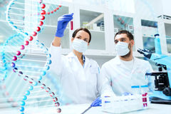 Scientists with test tubes making research in lab Royalty Free Stock Image