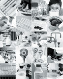 Scientists and their toys, collage Royalty Free Stock Photography