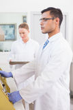 Scientists using technology for research Stock Photo