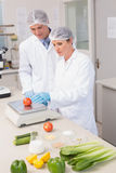 Scientists weighing tomato Royalty Free Stock Images