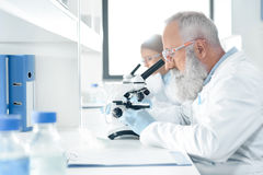 Scientists in white coats working with microscopes in chemical lab. Side view of scientists in white coats working with microscopes in chemical lab Royalty Free Stock Images
