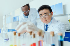 Scientists in white coats working together in chemical laboratory Royalty Free Stock Photography