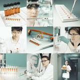 Scientists at work, collage Royalty Free Stock Photography