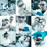 Scientists at work, collage Royalty Free Stock Photos