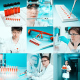 Scientists at work, collage Stock Photos
