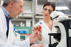 Scientists at work in a laboratory Royalty Free Stock Photos