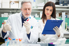 Scientists at work in a laboratory stock images