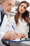 Scientists at work in a laboratory Royalty Free Stock Image