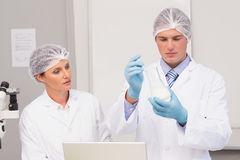 Scientists working attentively with beaker Royalty Free Stock Photography