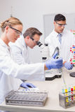 Scientists working attentively. In laboratory stock photography