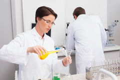 Scientists working attentively with test tube and computer Royalty Free Stock Photography