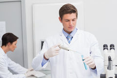 Scientists working attentively with test tube and computer Stock Photos