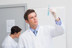 Scientists working attentively with test tube and computer Stock Photography